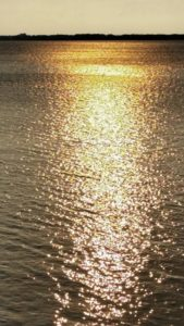 River of gold 1
