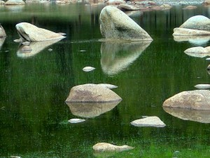 Rocks in a pond